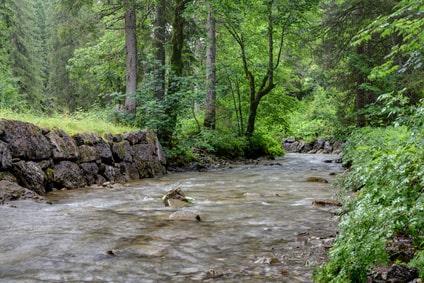 Uferbefestigung an einem Gebirgsbach