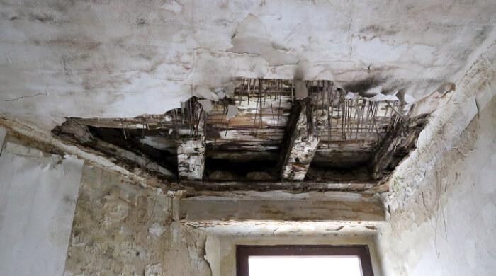 Schäden durch Hausschwamm in einem Gebäude