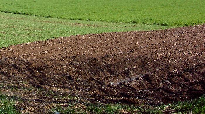 Der Bodenwert wird nach dem Vergleichswertverfahren in der Immobilienwertermittlungsoverordnung bestimmt.