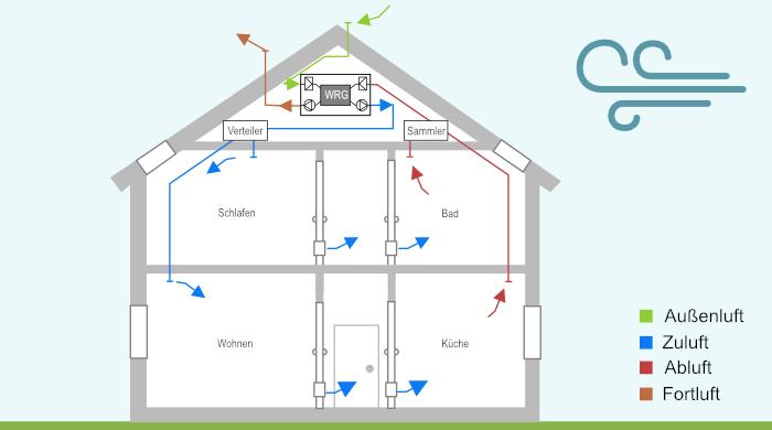 Grafische Darstellung einer zentralen Wohnraumlüftung mit Wärmerückgewinnung in einem Einfamilienhaus