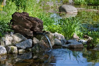 Gewässeranlage mit Zufluss