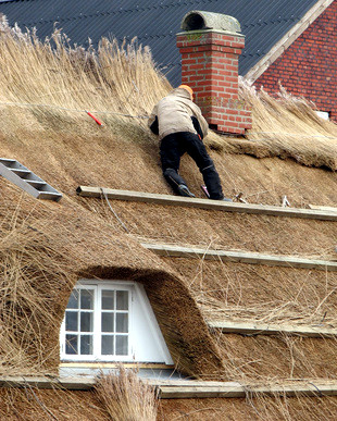 Arbeiten an einem Reetdach